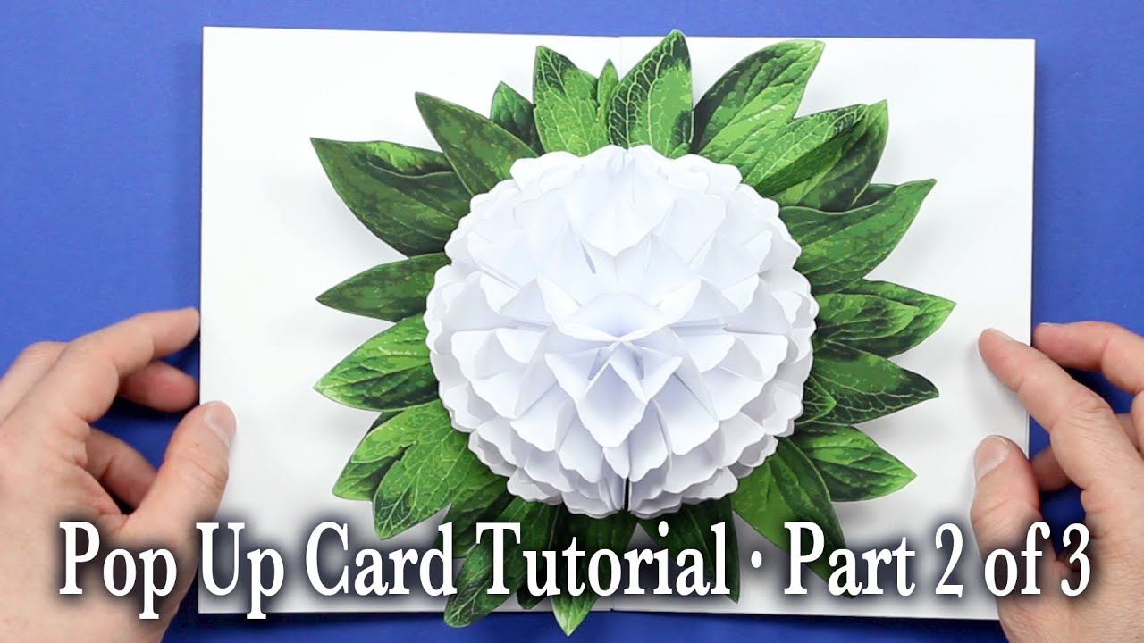 basic pop up card instructions
