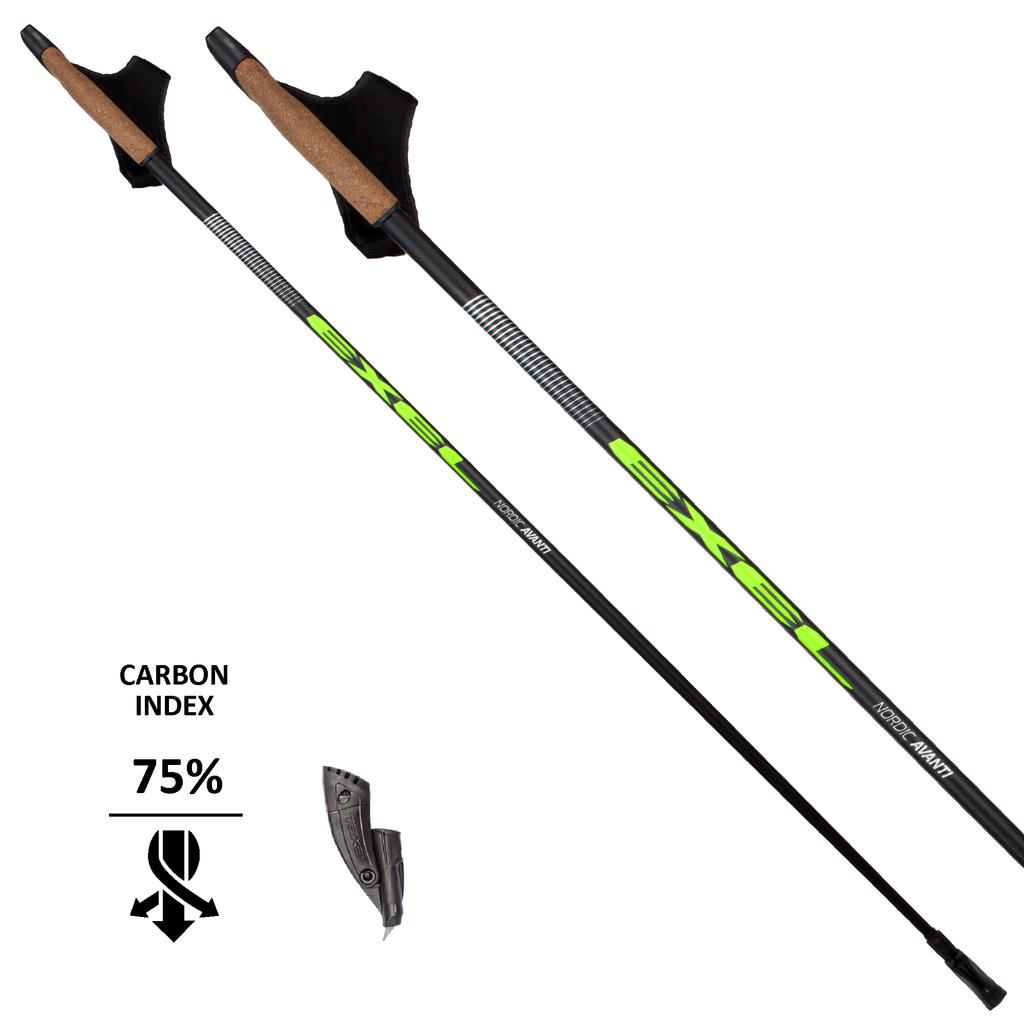 nordic walking poles instruction