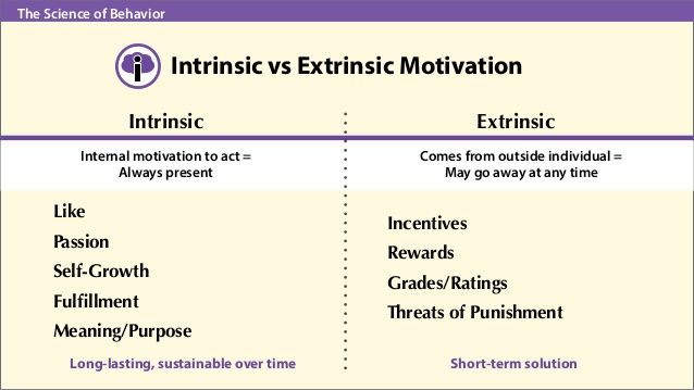 toward a theory of intrinsically motivating instruction