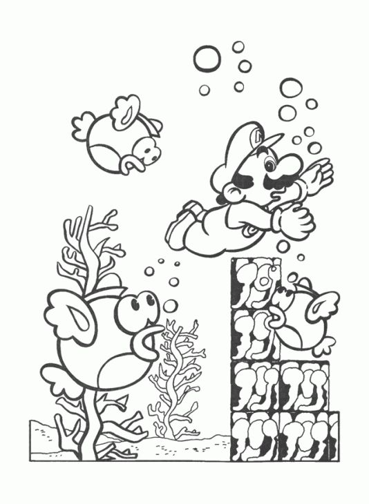 swim kids 5 instructir sheet